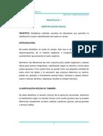 Práctica N° 1 Identificación Visual.pdf