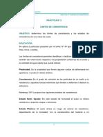 Práctica N° 3  Limites de Consistencia.pdf