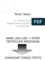 Torsio Testis