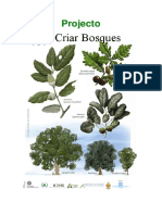 Criar Bosques