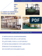 FERMENTACIÓN ALCOHOL CARBURANTE