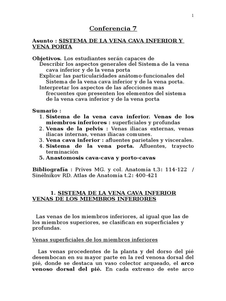 Atractivo Inferior Vena Anatomía De Las Extremidades Patrón ...