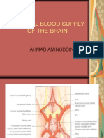 # Dr Amin Arterial Blood Supply of the Brain