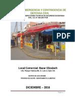PLAN DE SEGURIDAD DE DEFENSA - TIENDA ELIZABETH.docx