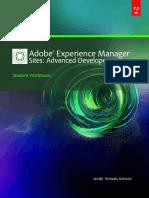Aem60 Wb Adv Developer 07062014