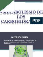 bioqpresentacion3 FINALIS