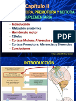 Corteza Motora y Premotora 13-junio-2015.pdf