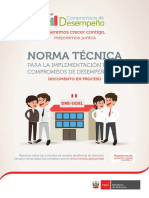 2017 Cdd Norma Tecnica