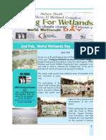 Nature Walk & Wetlands Report
