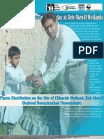 Tree Plantation in Deh Akro-II Wetlands