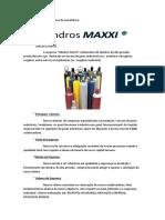 Empresa Cilindros MAXXI.pdf