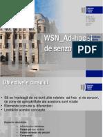 WSN Ad Hoc&Senzori