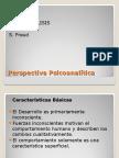 Perspectiva Psicoanalitica