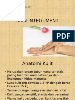 skin integument 1.pptx