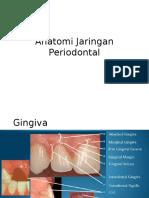 Anatomi Jaringan Periodontal