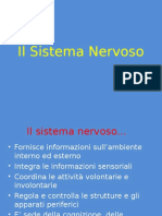 Sistema Nervosoles2