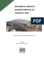 Informe CEAM Incendio Forestal Bolbaite 15/06/2016