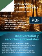 Certificación y Servicios Ambientales