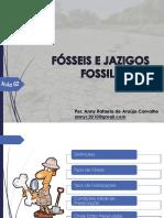 Aula 02 - Fósseis