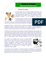 Charla 5 minutos-Alergias laborales.pdf