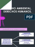 Sesion 1 - Derechos Humanos y Derecho Ambiental