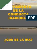 109324803-Directivas-Para-El-Control-de-La-Ira.ppt