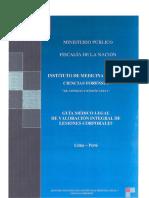 Guia DE LESIONES 2016.pdf
