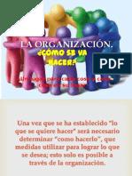 La Organizacion - Cap. IV