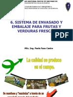 CLASE 6 SISTEMA DE ENVASADO Y EMBALAJE PARA PRODUCTOS FRUTAS Y HORTALIZAS FRESCAS.pdf