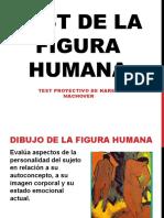 Diapositivas Figura Humana