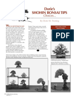 Shohin Bonsai Article