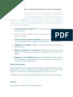 Perfil Profesional de La Carrera Profesional de Quimica Industrial