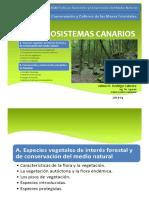 UD1A-ECOSISTEMAS CANARIOS