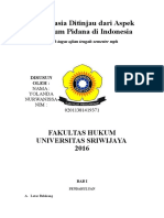 Makalah Euthanasia Ditinjau Dari Aspek Hukum Pidana Di Indonesia