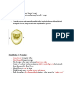 Occlusal Aspect and Outline of Simple Class I Cavities in Premolars and Molars