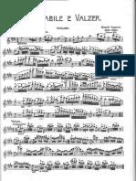 Paganini - Cantabile e Valzer Violine