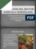 Producción Del Sector Agrícola Venezolano Diapositiva