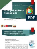 Acompañamiento Pedagógico_ ROQUE