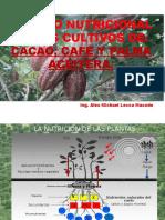 Nutricion Alex Cafe, Caceo, Palma Aceitera