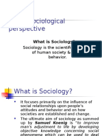 1-sociology-100206041618-phpapp02