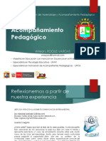 Acompañamiento Pedagógico_ ROQUE, Willean (2016)