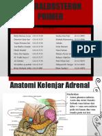 61502 Hiperaldosteron Primer