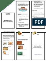 Documents.mx Leaflet Demam Thypoid Tipes