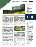 Vision Quest - Schamanismus Zeitung