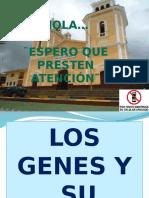 Los Genes y Su Accion