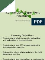Light-Dependent Reaction
