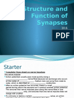 10.6_the_structure_and_function_of_synapses_ali.pptx