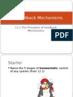 13.1_feedback_mechanisms.pptx