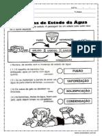 atividades-sobre-os-estados-fisicos-da-agua.pdf
