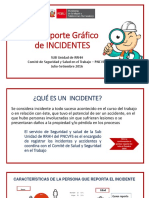 1er Reporte Grafico de incidentes PNCVFS 2016